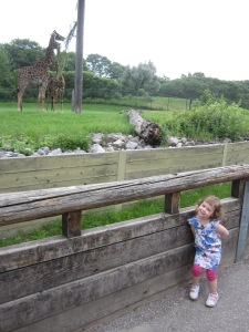 theelmlife_vacation_zoo3