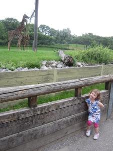 theelmlife_vacation_zoo3