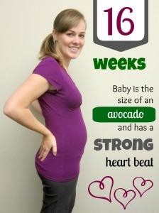 Baby W: 16 Weeks