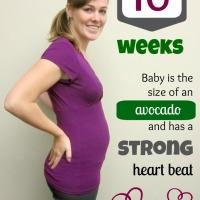 Pregnancy Photo: 16 Weeks