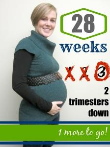 Baby W: 28 Weeks