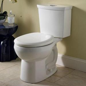 theelmlife_bathroomreno_toilet