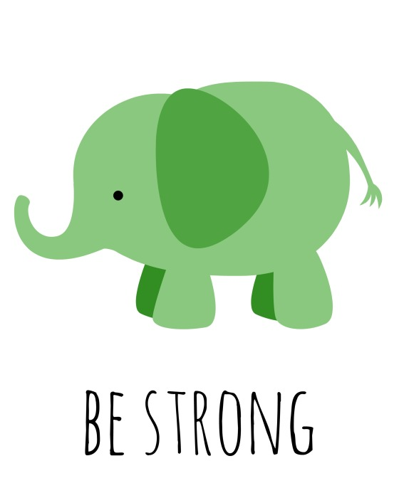 theelmlife_elephant